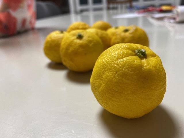 パーティトップ柚