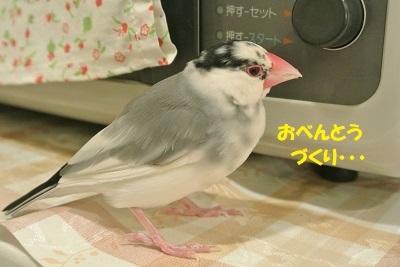 DSC_0130済