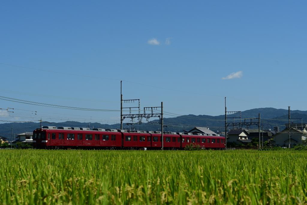 DSC_6103.jpg