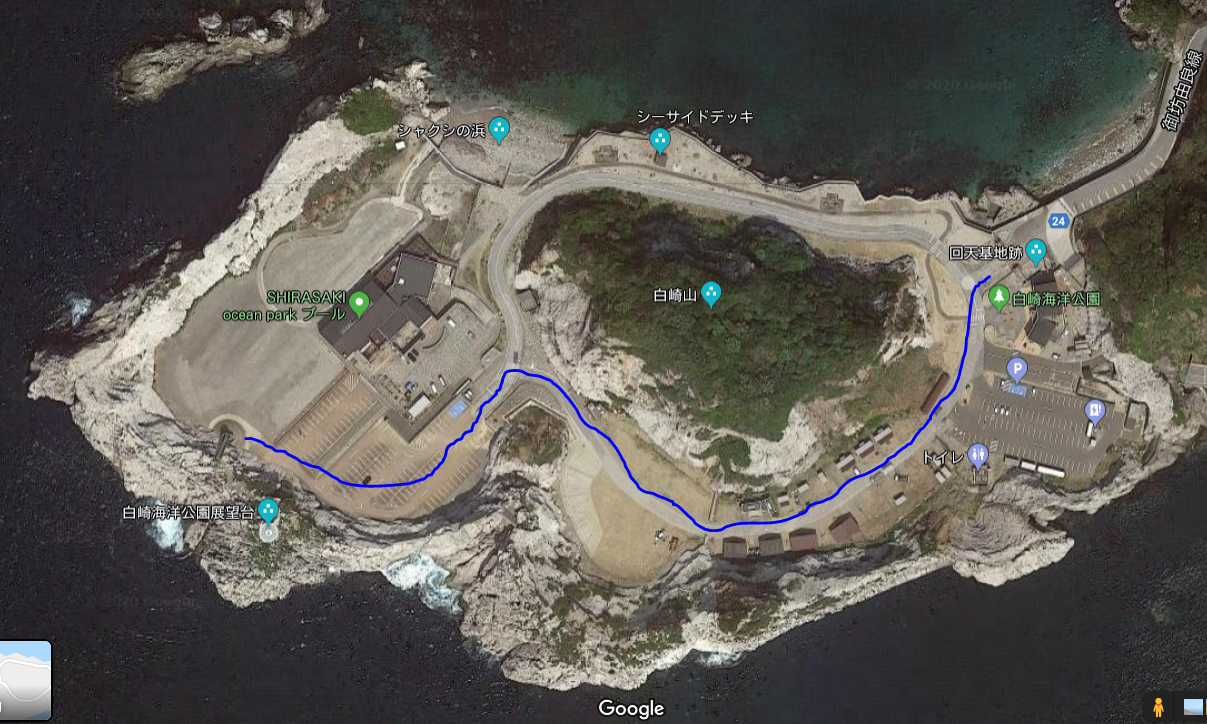 ぴーきち&ダイナ 和歌山湯浅ツーリング 白崎海洋公園 上からの画像