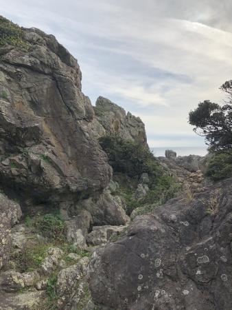 ぴーきち&ダイナ ハーレーで行く 室戸岬 ツーリング 先端