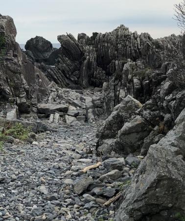 ぴーきち&ダイナ ハーレーで行く 室戸岬 ツーリング タービダイト層