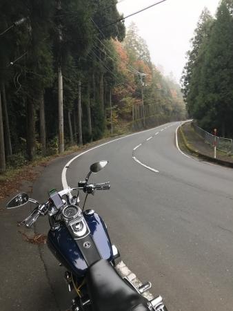 ぴーきち&ダイナ 美山 かやぶきの里ツーリング 林道