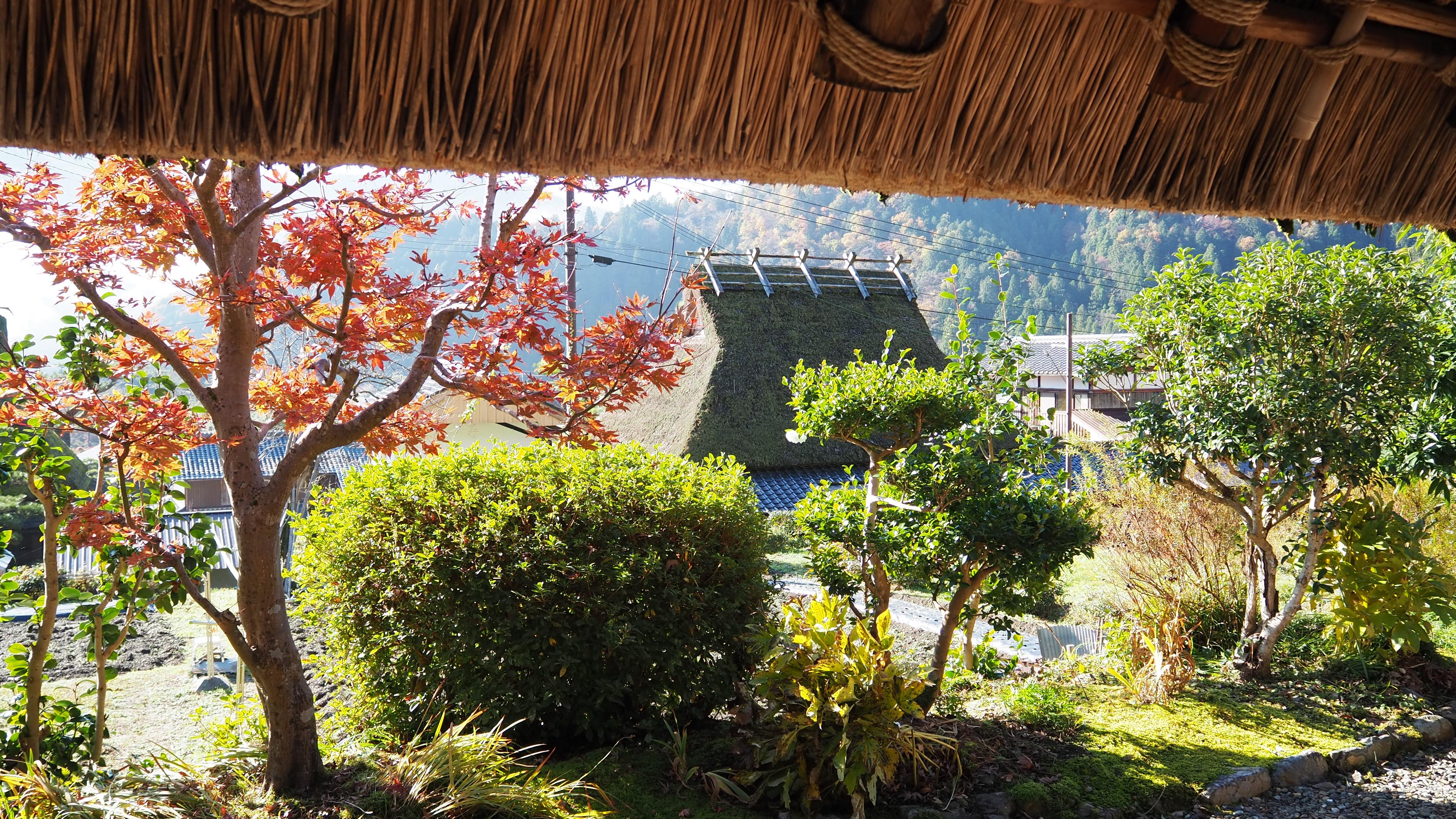 ぴーきち&ダイナ 美山 かやぶきの里ツーリング 美山民俗資料館 縁側の景色