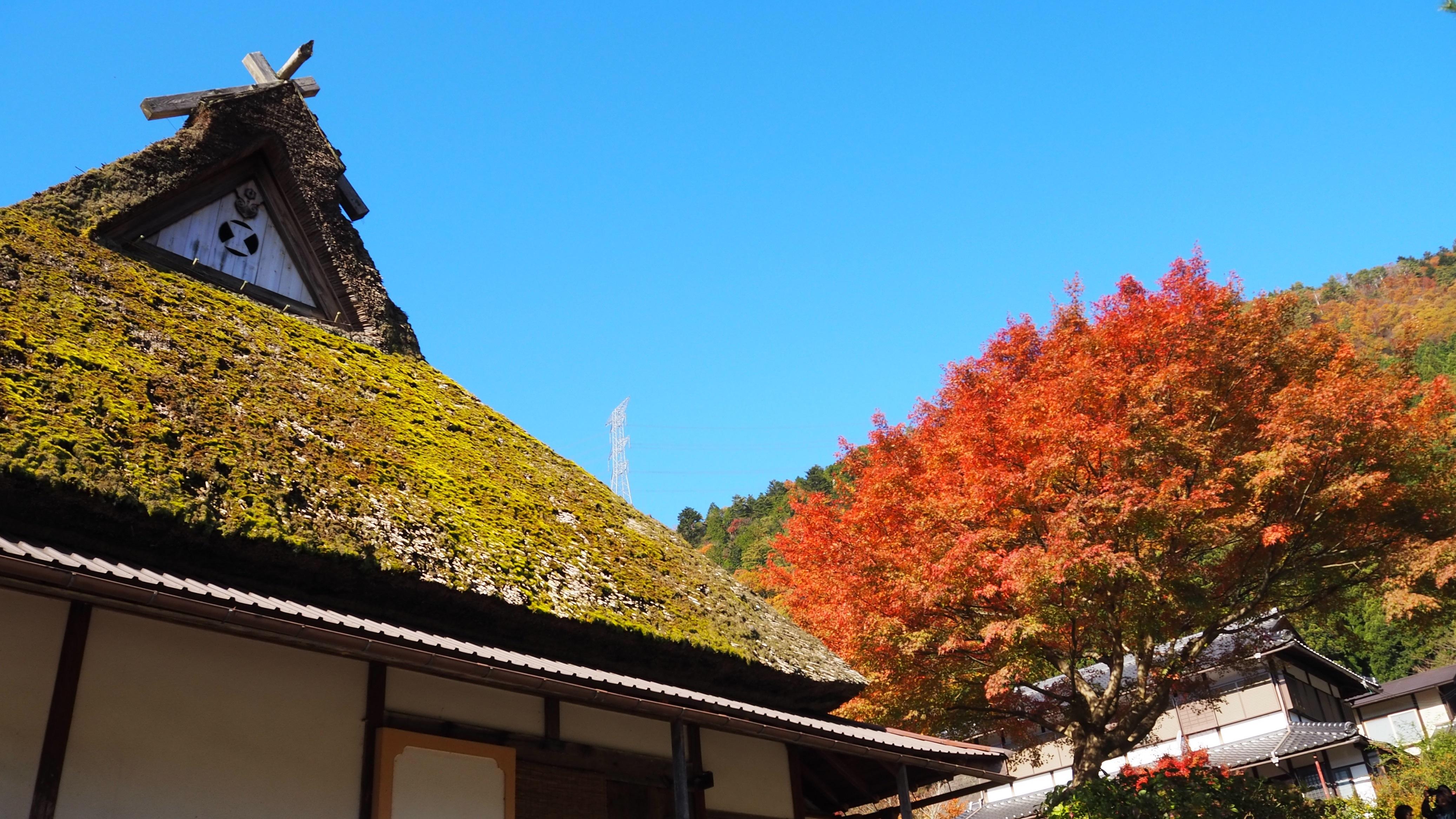 ぴーきち&ダイナ 美山 かやぶきの里ツーリング 景観