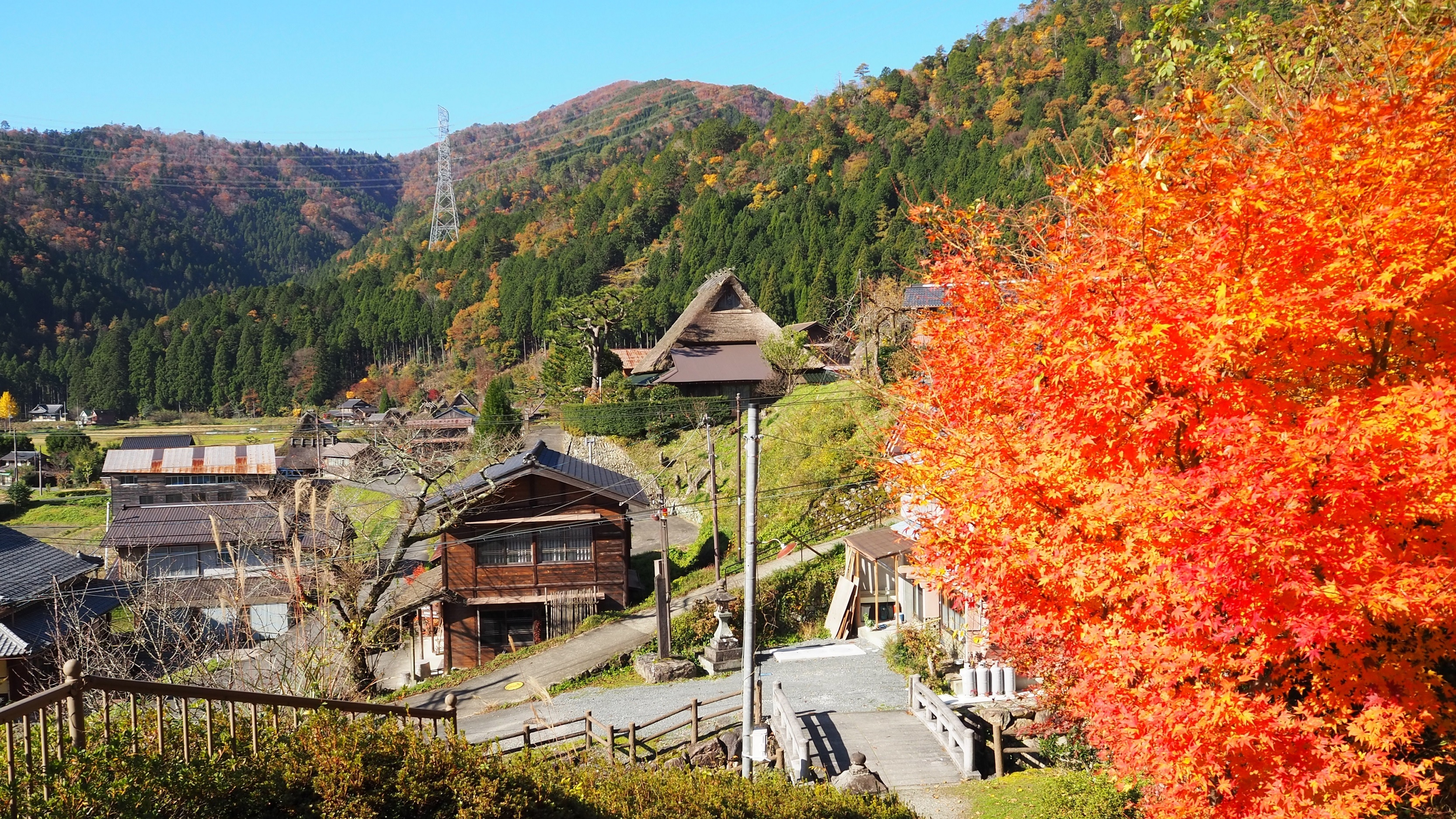 ぴーきち&ダイナ かやぶきの里ツーリング 知井八幡神社の紅葉