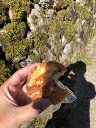 ぴーきち&ダイナ 美山 かやぶきの里ツーリング 自然栽培 美山米パン