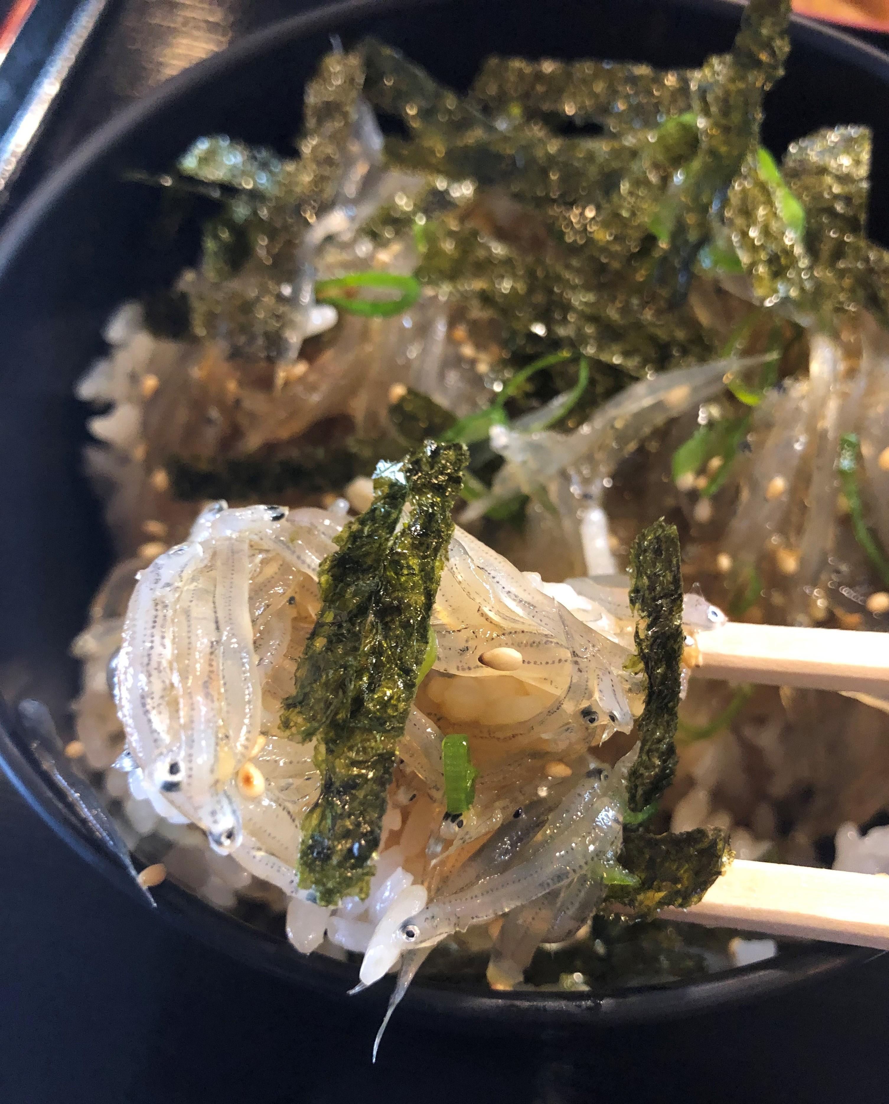 ぴーきち&ダイナ 和歌山湯浅ツーリング かどや食堂 生シラス丼