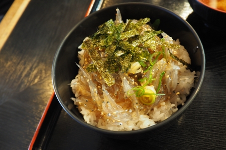 ぴーきち&ダイナ 和歌山湯浅ツーリング かどや食堂 生シラス丼 定食