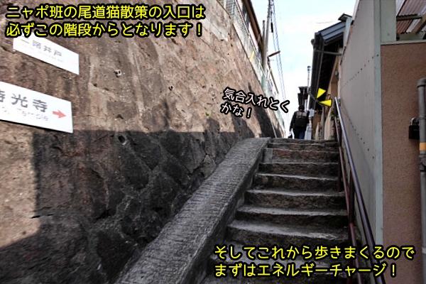 ニャポ旅72 尾道 その1