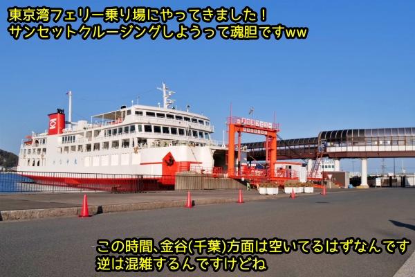 ニャポ旅番外編5 東京湾フェリー