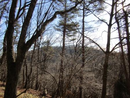 191211黒岩山~和美峠~愛宕山 (5)黒岩山s