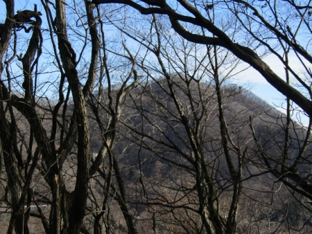 191211黒岩山~和美峠~愛宕山 (14)愛宕山s