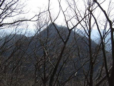 191211黒岩山~和美峠~愛宕山 (37)大山s