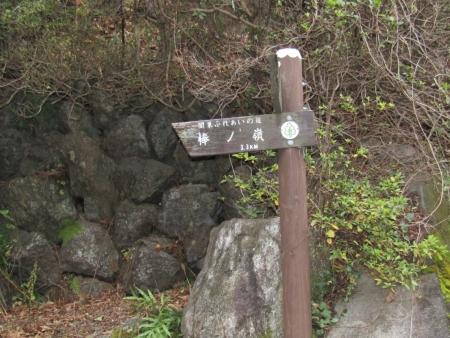 191221棒ノ嶺 (4)s