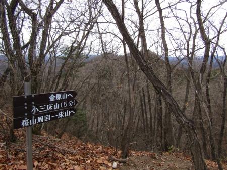 200118三床山 (15)s