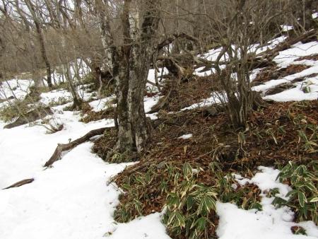 200215駒ヶ岳~黒檜山 (2)s