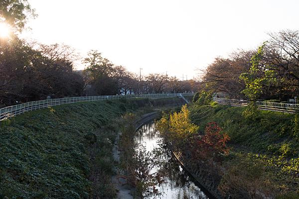 香流川の晩秋