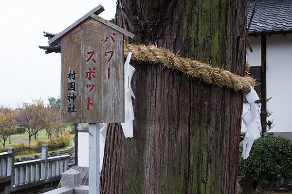 村国神社と御神木