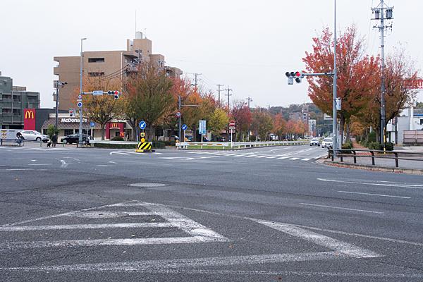 交差点街路樹紅葉風景