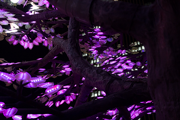 LEDのツリー