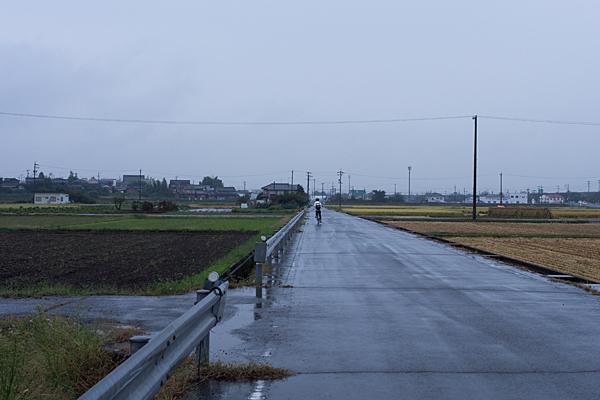 雨の各務原田んぼの道