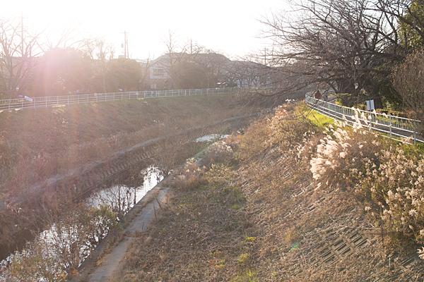香流川冬の光