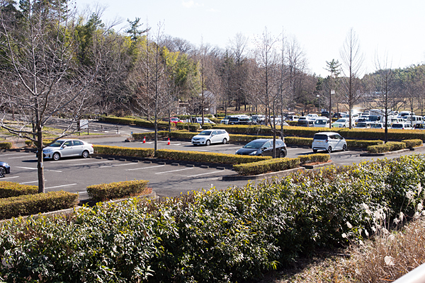 牧野が池緑地の駐車場風景