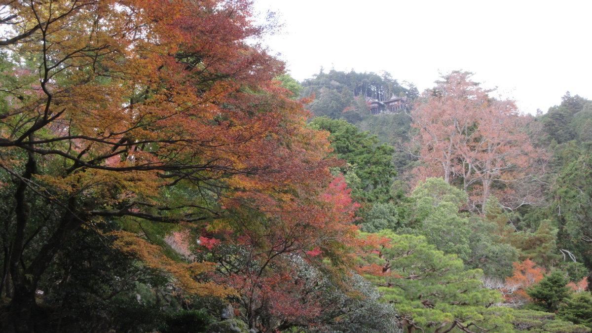 1911-48-坂本-IMG_3876