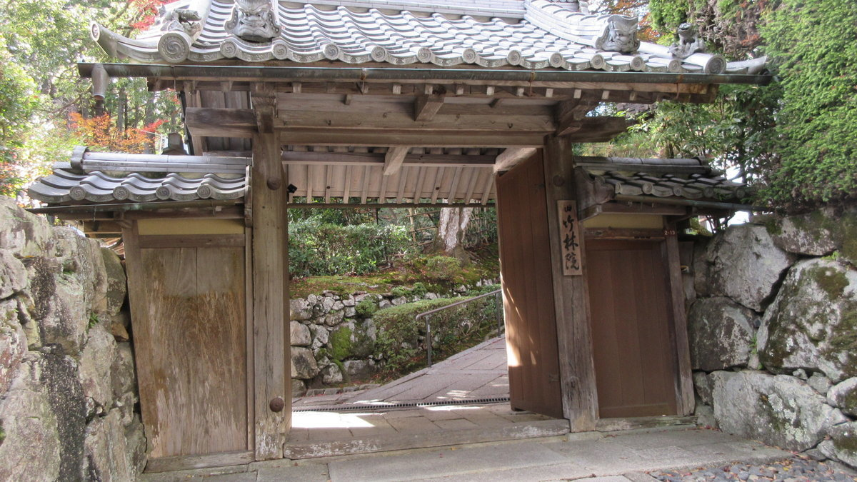 1911-43-坂本-IMG_3889
