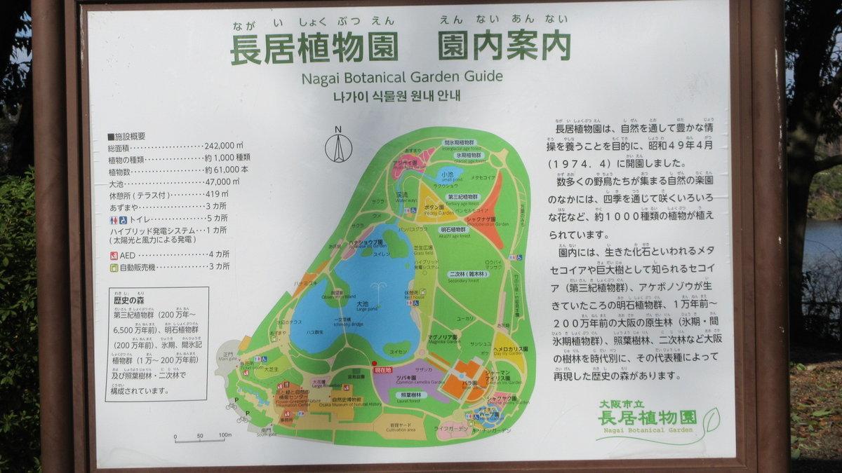 2001-25-住吉大社-IMG_4368