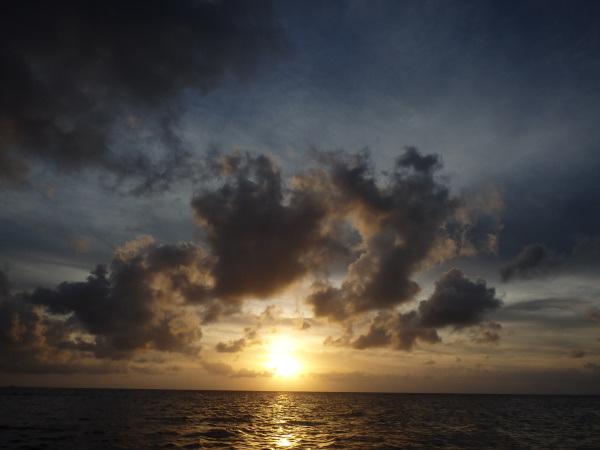 200624d.jpg