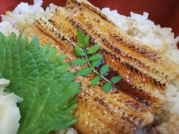 UmigokochiFukai_007_org.jpg