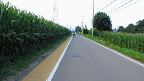 トウモロコシ畑を抜けて、国道146号へ入ります。