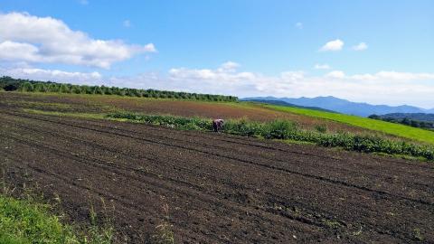 快晴の中、農作業をしている方も…。