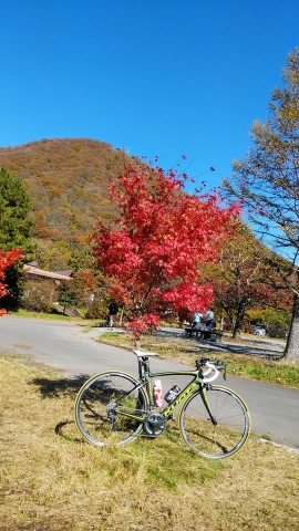紅葉の榛名山とユリー