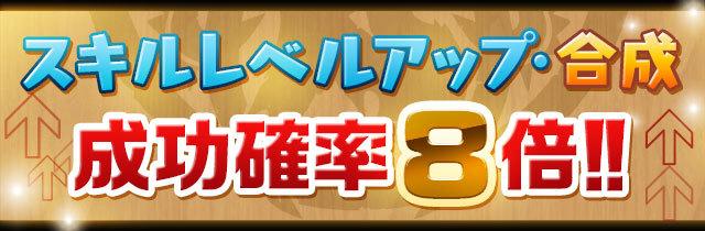skill_seikou8.jpg