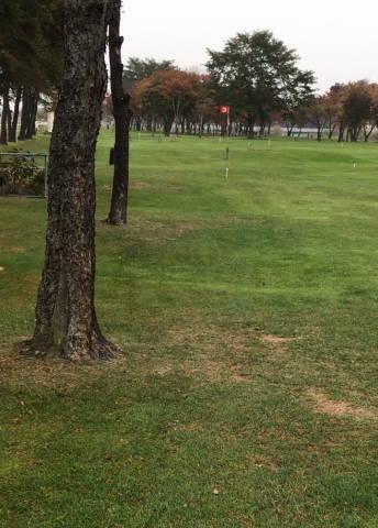 十勝川公園パークゴルフ場A (3)