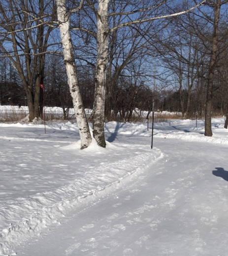 帯広の森雪中パークゴルフ場 (4)