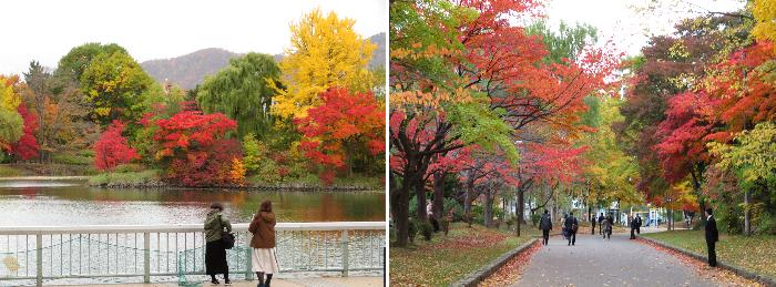 20191025中島公園2