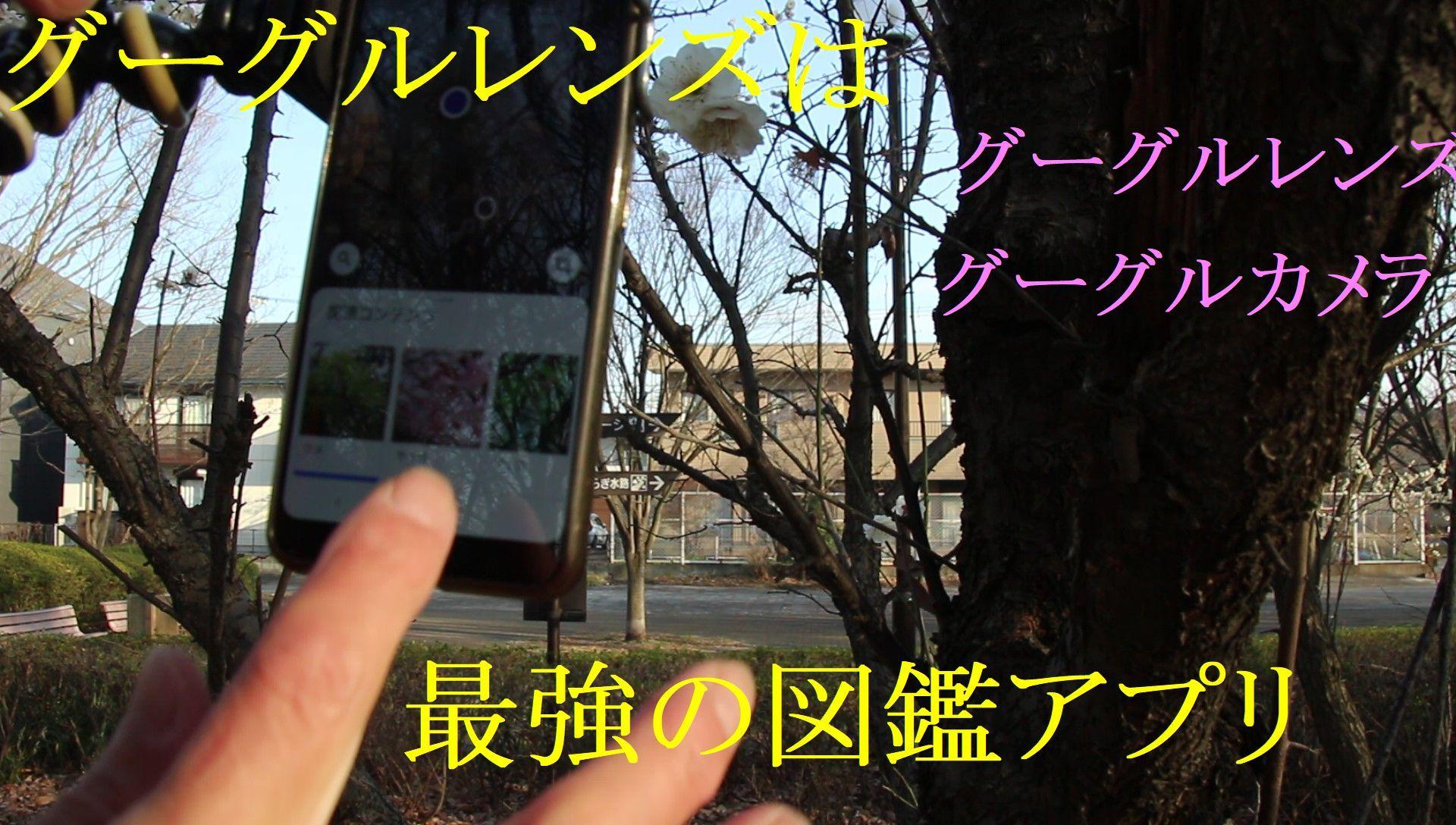 レンズ③_Moment(2)