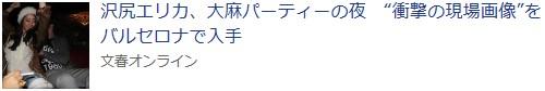 ⑪沢尻エリカがMDMAで逮捕!矢田亜希子&押尾学-西川史子&河井案里!
