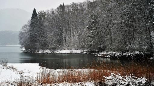 3934聖湖201152