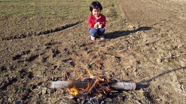 田んぼで火遊び