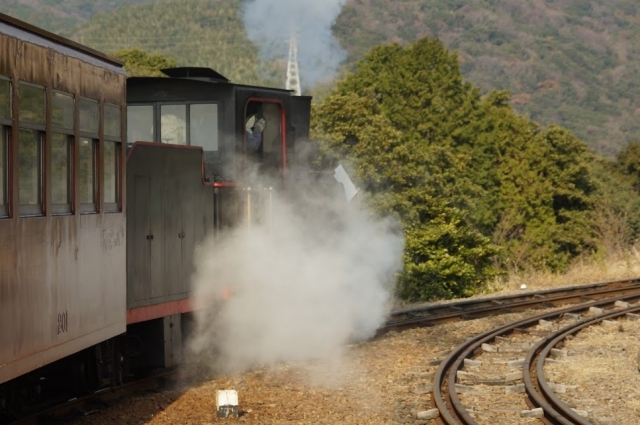 愛知こどもの国の軽便鉄道 発車直後、林間を行く