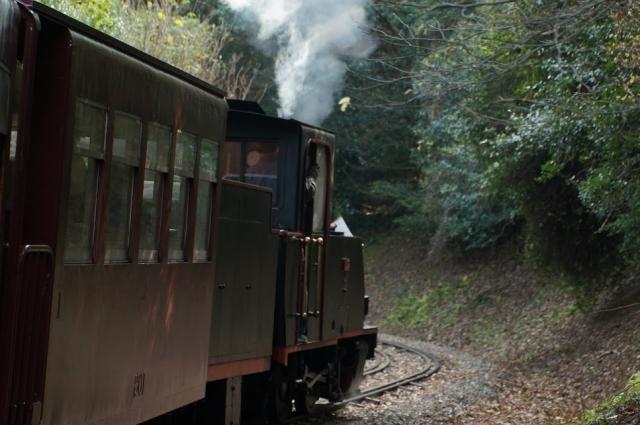 北側斜面の林間を行く、愛知こどもの国の軽便鉄道