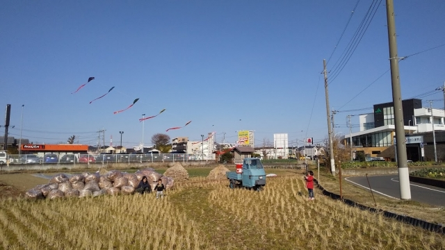 田んぼで凧揚げ