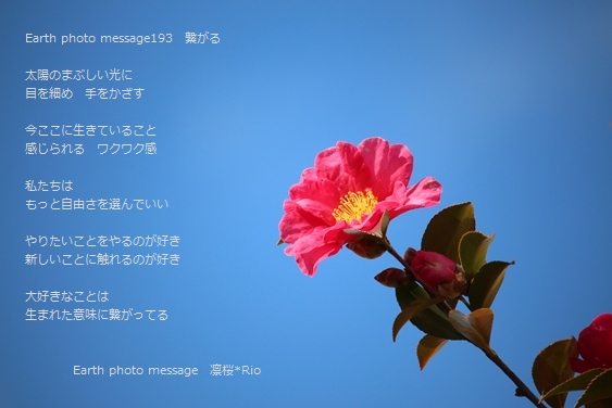 Earth photo message193 繋がる