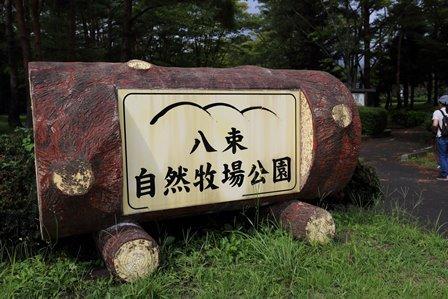 八束自然牧場公園3