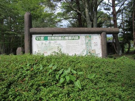 八束自然牧場公園4